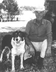 Jack Hiscock with border collie sheep dog