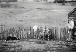JackHiscockMoorlandsBlazingMoorlands