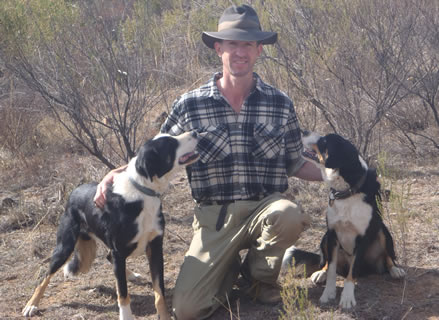 Sheepdog training lessons are available in Victoria with Tully Williams